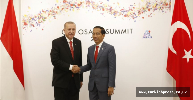 Turkey, Indonesia are strategic partners: Turkish MP