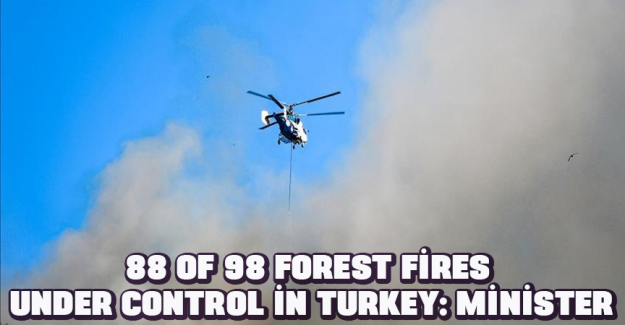 88 of 98 forest fires under control in Turkey: Minister